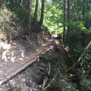 Arzler Alm Trail Innsbruck