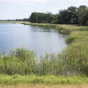 """Labe není jediná """"voda"""", kterou potkáte. Stezka vede i okolo mnoha rybníků, tůní a jezer"""