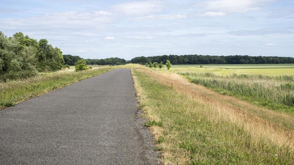 Labská cyklostezka Elberadweg